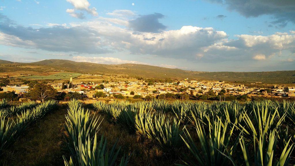 Pueblos Mágicos Tequila patrimonio cultural de la humanidad en méxico