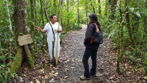 Ecoturismo en México Nahá Selva Lacandona de Chiapas