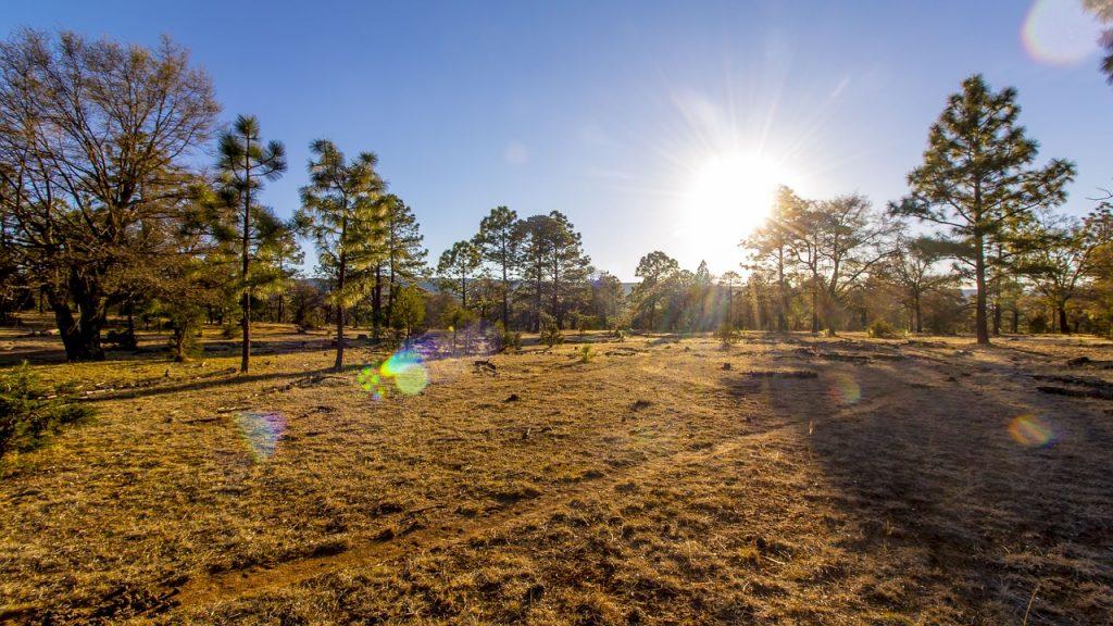 Durango desierto fotografía