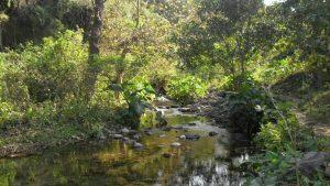 Parque Ecoturístico Huilotepetl